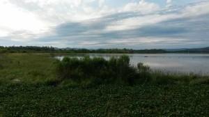 Figura 1 – Margens do Lago Dourado (Foto: Igor Fernandes)