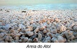 areia Diário de bordo