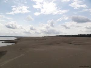 Praia de desova de quelônios no rio Solimões