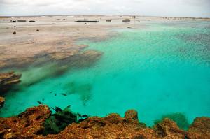 Piscina natural formada no platô recifal durante a maré baixa