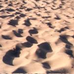 Dunas de areias quartzosas