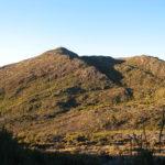 Campos de altitude