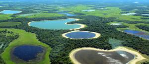 Áreas úmidas no Pantanal