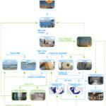 Organograma da produção de sal