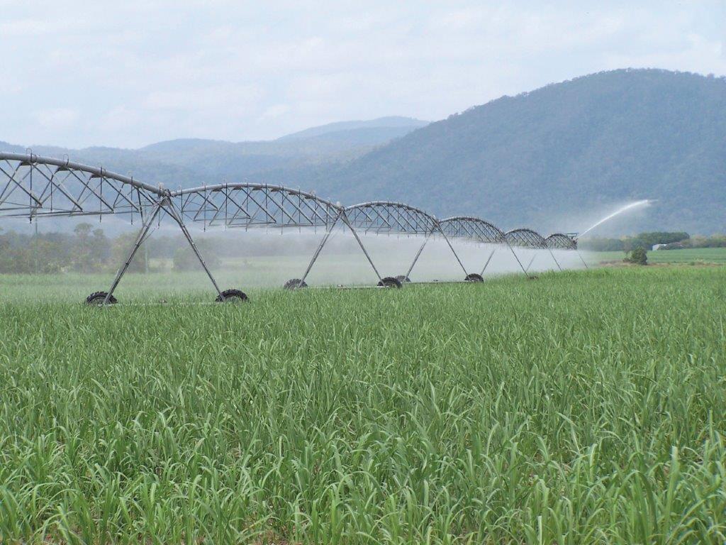 aspersão - irrigação