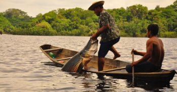 Pesca pirarucu