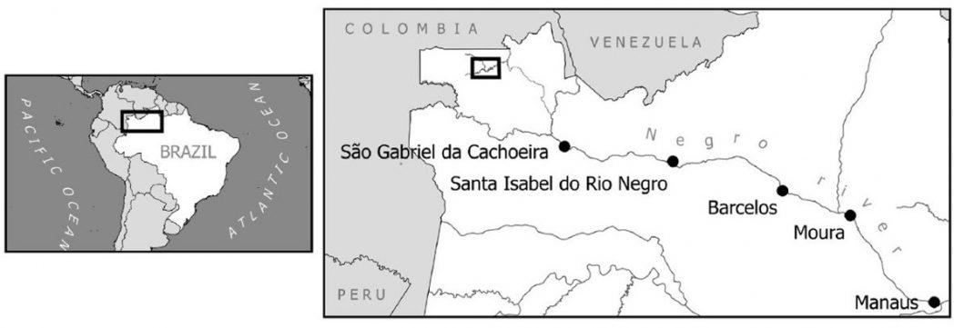 Mapa das cidades do Brasil