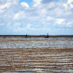Âncoras de naufrágios