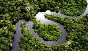 restauração ecologicas de rios