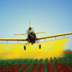 Aplicando pesticídas