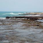 Platô recifal durante a maré baixa