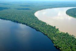Ecossistemas - Rios e lagos