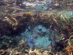 Lixo submerso