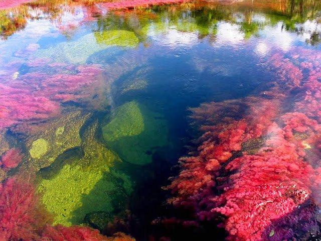 Rio com as diferentes colorações