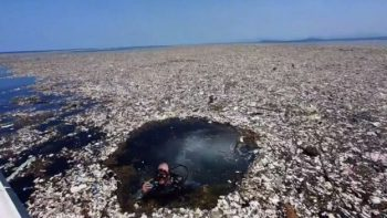 mar de lixo no Caribe Caroline power